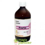 Argint coloidal Forte 500 ML - Aghoras