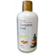 Curcumin Gold 946 ML - Alevia