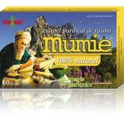 Mumie 60 CPR – Damar