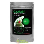 Pudra proteica de canepa 300 G - Canah