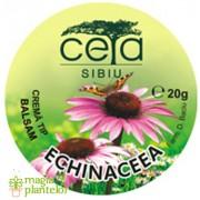 Unguent de echinacea 20 G - Ceta