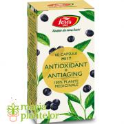 Antioxidant + Antiaging, M117, 60 capsule - Fares
