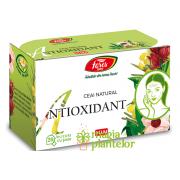 Ceai antioxidant 20 DZ – Fares