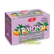 Ceai armonie nalba cu mandarine 20 DZ – Fares