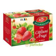 Ceai Aromfruct căpșuni și fragi 20 DZ - Fares
