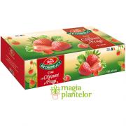 Ceai capsuni fragi 100 DZ - Fares