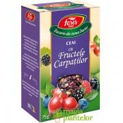 Ceai fructele Carpatilor 75 G - Fares