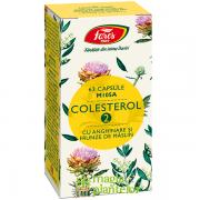 Colesterol 2 cu anghinare si frunze de maslin – Fares