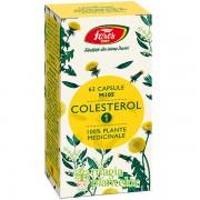 Colesterol 1, M105, 63 CPS - Fares