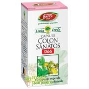 Colon sanatos 60 CPS - Fares