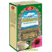 Echinacea 50 G – Fares