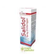 Salidol Spray 30 ML - FarmaClass