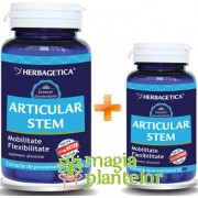 Articular Stem 60+10 CPS - Herbagetica
