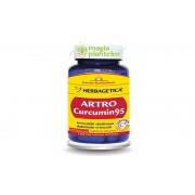 Artro Curcumin95 - 120 CPS - Herbagetica