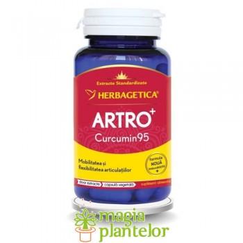 Artro+ Curcumin95 - 60 CPS - Herbagetica
