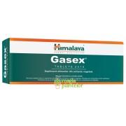 Gasex 20 TB – Himalaya