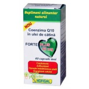 Coenzima Q10 in ulei de catina Forte Plus 60 MG - 40 CPS - Hofigal