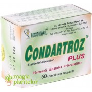 Condartroz plus 60 CPR - Hofigal