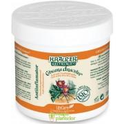 Gel antiinflamator Gheara dracului cu plante Bio 250 ML – Krauter
