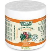 Gel antiinflamator Gheara dracului cu plante Bio 500 ML – Krauter