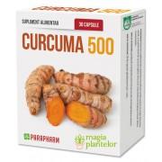 Curcuma 500 - 30CPS - PARAPHARM