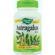 Astragalus 100 CPS - Secom