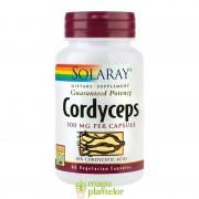 Cordyceps 500MG 60CPS - Secom