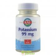 Potassium 99 MG 100CPS - Secom