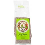 Seminte de psyllium 100 G – Solaris