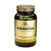 Echinacea 100 TB - Solgar