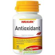 Antioxidant 30 TB - Walmark
