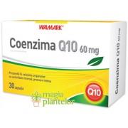 Coenzima Q10 60 mg 30 CPS - Walmark