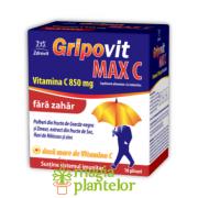 Gripovit Max C Fara Zahar plic/10 G - Zdrovit