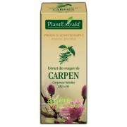 Extract muguri carpen 50 ML – PlantExtrakt