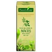 Extract mladite maces 50 ML - PlantExtrakt