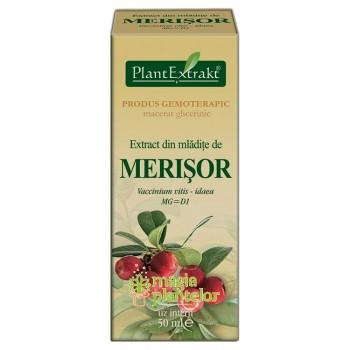 Extract mladite merisor 50 ML - PlantExtrakt